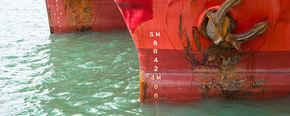 Technology Insight Training on Coating Formulation Main Image